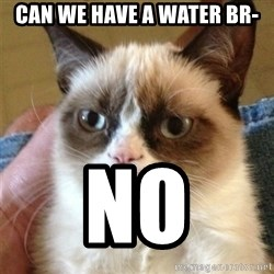 Grumpy Cat  - Can we have a water br- NO