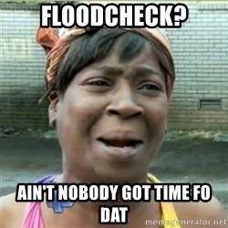 Ain't Nobody got time fo that - floodcheck? ain't nobody got time fo dat