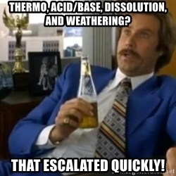 That escalated quickly-Ron Burgundy - Thermo, Acid/Base, Dissolution, and Weathering? that escalated quickly!