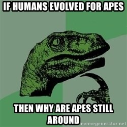 Philosoraptor - if humans evolved for apes then why are apes still around