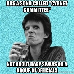 "Disturbed Bowie - Has a song called ""Cygnet COMMITTEE"" Not about baby swans or a group of officials"