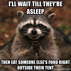 evil raccoon - I'LL wait till they're asleep then eat someone else's food right outside their tent