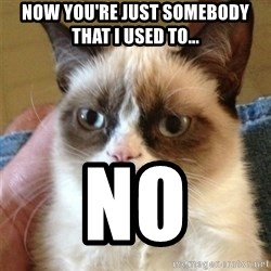 Grumpy Cat  - Now you're just somebody that i used to... no