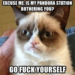 Grumpy Cat  - excuse me, is my pandora station bothering you? go fuck yourself