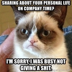 Grumpy Cat  - sharing about your personal life on company time? i'm sorry, i was busy not giving a shit.
