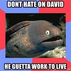 Bad Joke Eels - Dont hate on david he guetta work to live