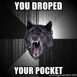 Insanity Wolf - you droped your pocket