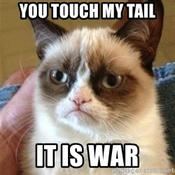 Grumpy Cat  - you touch my tail it is war