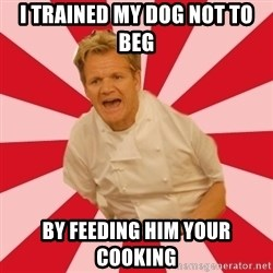 Chef Ramsay  - i trained my dog not to beg by feeding him your cooking
