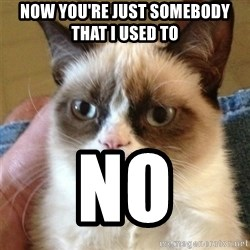 Grumpy Cat  - now you're just somebody that i used to  no