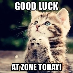 good luck cat - Good luck AT zone today!