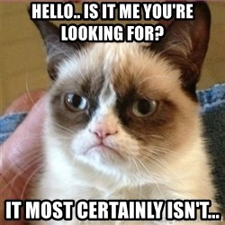 Tard's cat - Hello.. is it me you're looking for? it most certainly isn't...