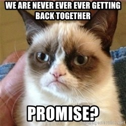 Tard's cat - We are never ever ever getting back together promise?