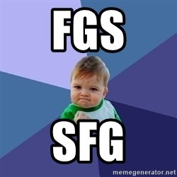 Success Kid - fgs sfg