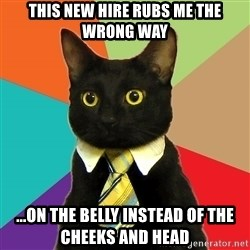 Business Cat - THIS NEW HIRE RUBS ME THE WRONG WAY ...ON THE BELLY INSTEAD OF THE CHEEKS AND HEAD