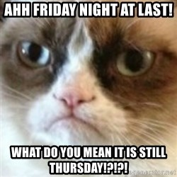 angry cat asshole - Ahh friday night at last! What do you mean it is still thursday!?!?!