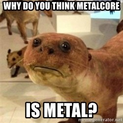 Sad Otter - Why do you think metalcore is metal?