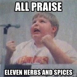 The Fotographing Fat Kid  - all praise eleven herbs and spices