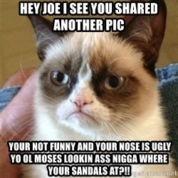 Grumpy Cat  - hey joe i see you shared another pic  your not funny and your nose is ugly yo ol moses lookin ass nigga where your sandals at?!!
