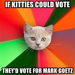 Advice Cat - if kitties could vote they'd vote for mark goetz