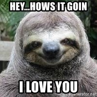 Sexual Sloth - hey...hows it goin i love you