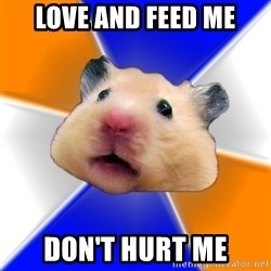 Hamster - love and feed me don't hurt me