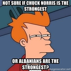 Futurama Fry - not sure if chuck norris is the strongest or albanians are the strongest?