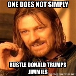 One Does Not Simply - one does not simply rustle donald trumps jimmies
