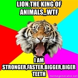 Time Of The Month Tiger - lion.the king of animals,,,wtf i am stronger,faster,bigger,biger teeth