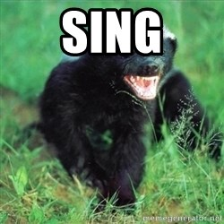 Honey Badger Actual - Sing