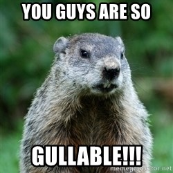 grumpy groundhog - YOU GUYS ARE SO  gullable!!!