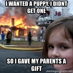 Disaster Girl - i wanted a puppy, i didnt get one so i gave my parents a gift