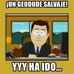 aaand its gone - ¡un geodude salvaje! yyy ha ido...