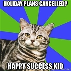 Introvert Cat - holiday plans cancelled? happy success kid