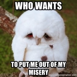 Sad Owl Baby - who wants  to put me out of my misery