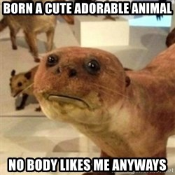 Sad Otter - Born a CUte adorable animal No body Likes me anyways