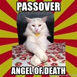 Dictator Cat - passover angel of death