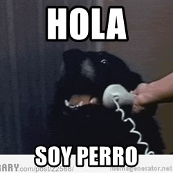 Hello This is Dog - Hola Soy perro