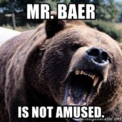 Bear week - Mr. Baer Is not amused.