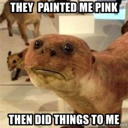 Sad Otter - They  painted me pink then did things to me
