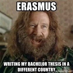 What Year - ERASMUS writing my bachelor thesis in a different country