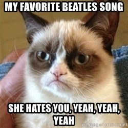 Grumpy Cat  - my favorite beatles song She hates you, yeah, yeah, yeah