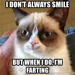 Grumpy Cat Smile - I DON't always smile but when i do, i'm farting