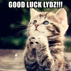 good luck cat - GOod luck lydz!!!
