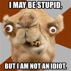 Crazy Camel lol - I may be stupid, but i am not an idiot.