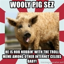 Wooly Pig - Wooly Pig sez he is hob nobbin' with the troll meme among other internet celebs baby!