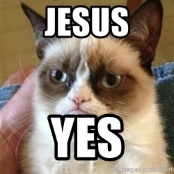 Grumpy Cat  - Jesus yes