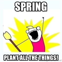 All the things - spring plant all the things!