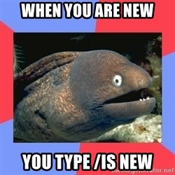 Bad Joke Eels - WHEN YOU ARE NEW YOU TYPE /is new