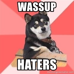 Cool Dog - WASSUP HATERS